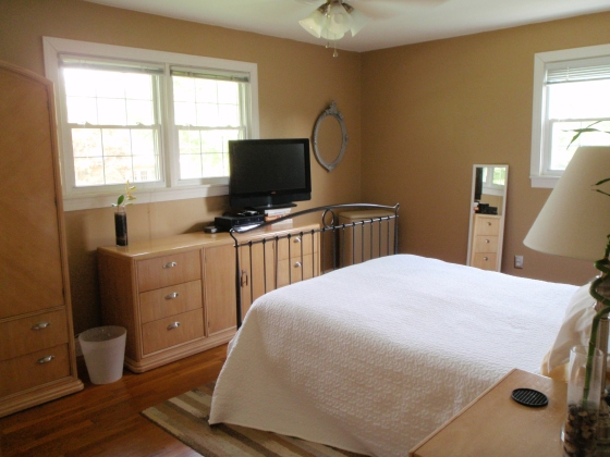 Master Bedroom with New Furniture